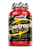 Lipotropic Fat Burner