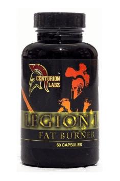 Legion 1,3