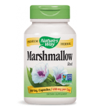 Marshmallow Root