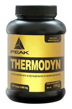 Thermodyn