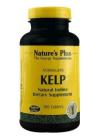 Norwegian Kelp