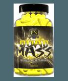 Quad Mass 2 0