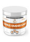 Genius Mushrooms